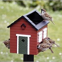 Fuglehuse & foderbræt