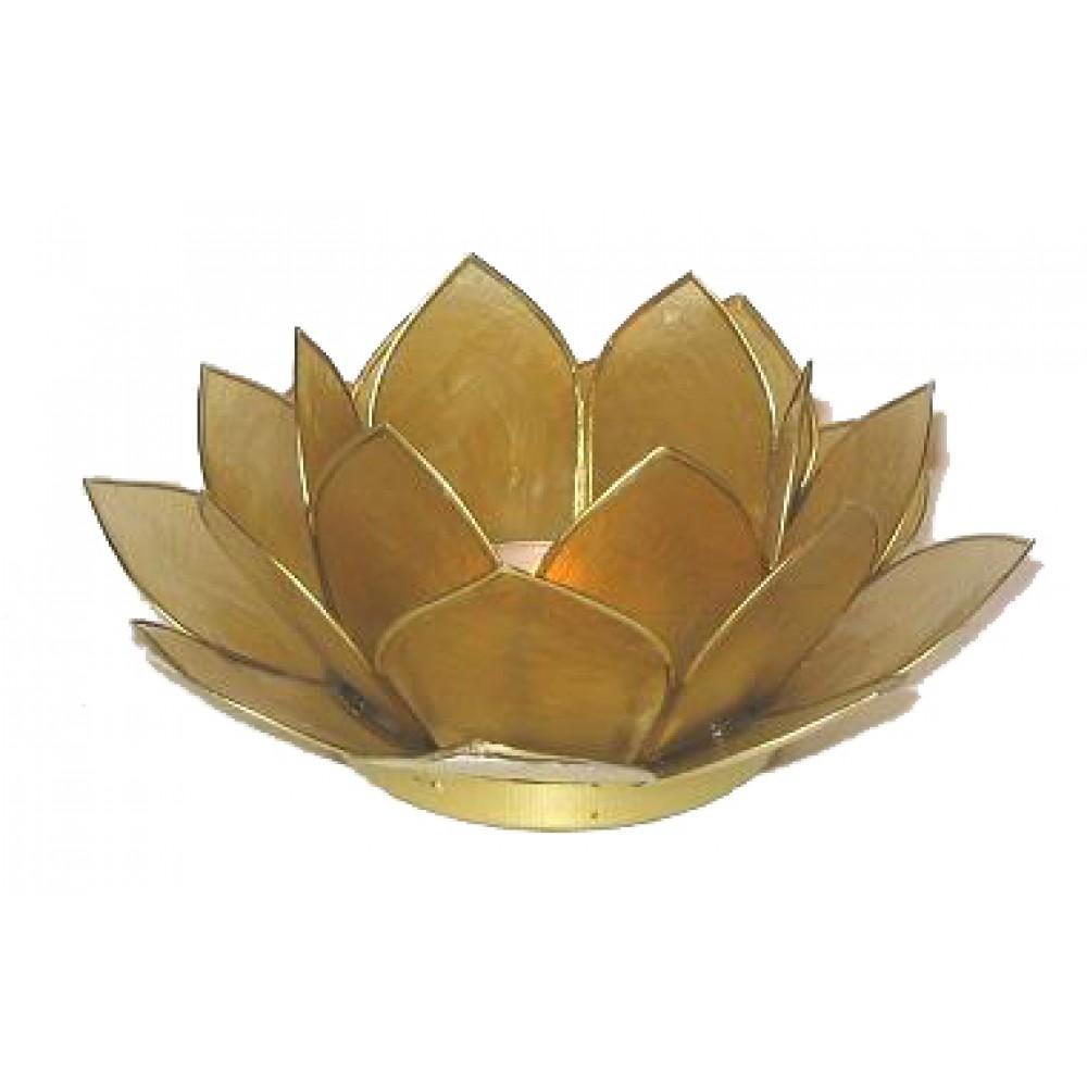Lotusstage Caramel-30