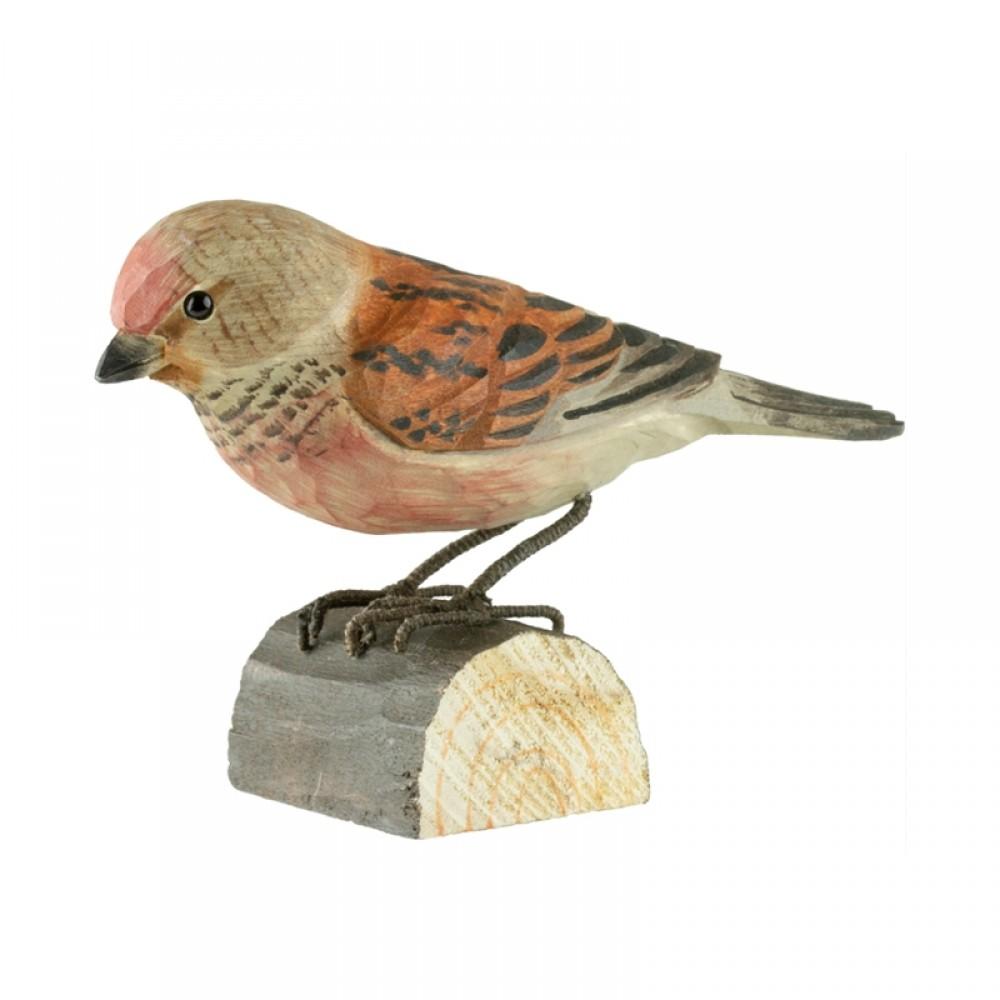 DecoBird - Tornirisk