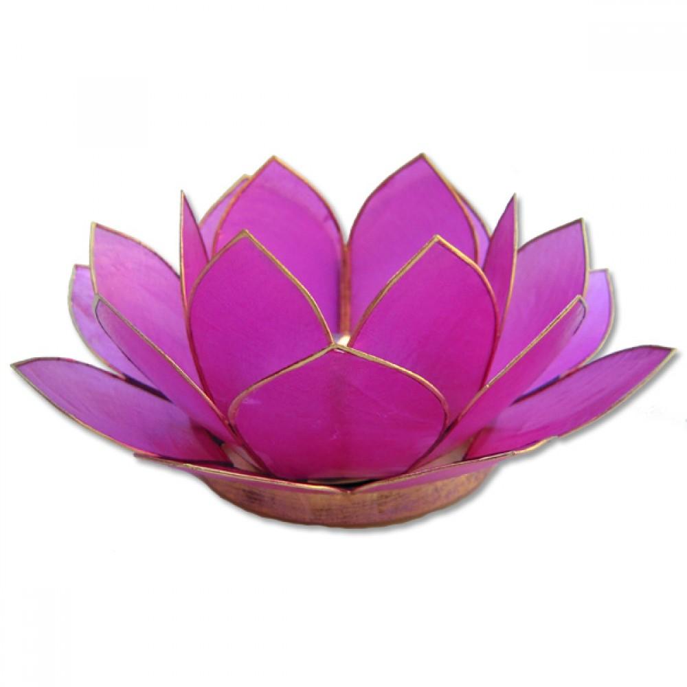 Lotusstage Pink-30