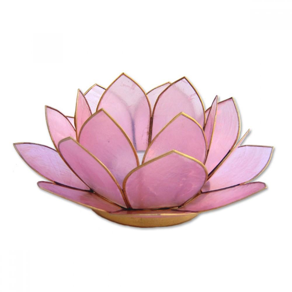 Lotusstage - Rose
