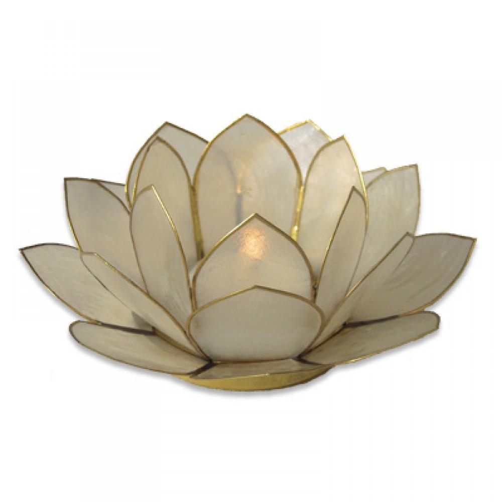 Lotusstage - Hvid