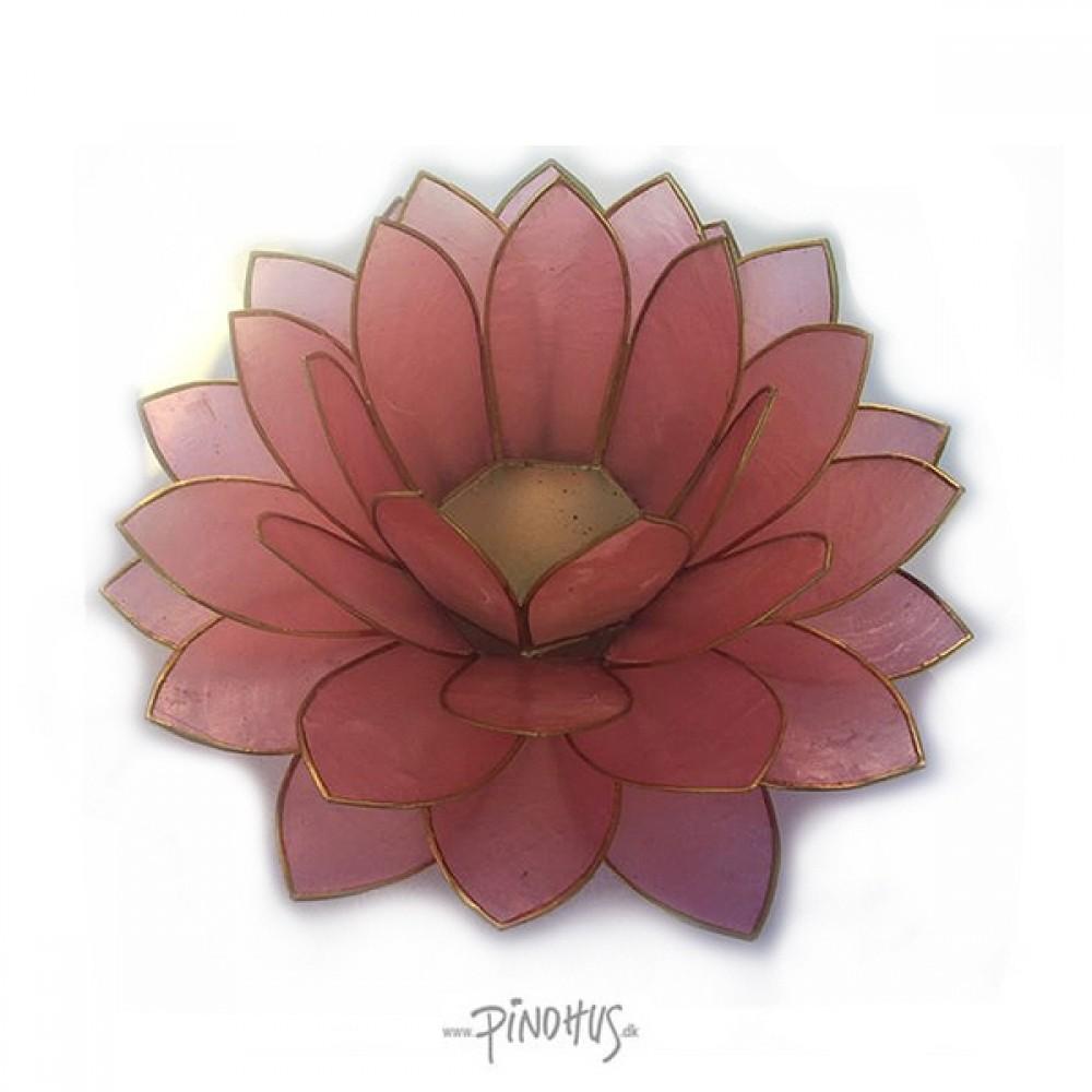 Mega Lotus - Blossom