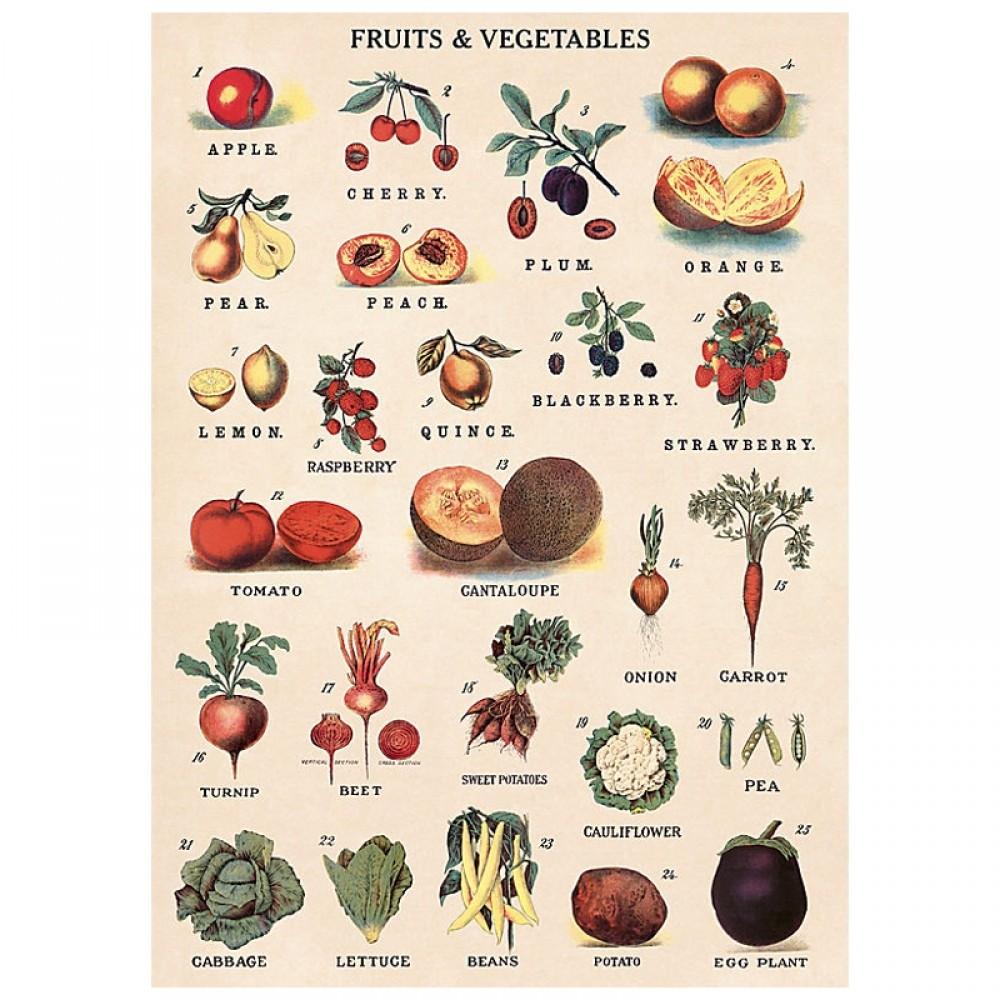 Plakat Fruit/vegetables 50x70cm-32