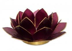 LotusstageBlomme-20