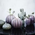 Keramik kaktus vase-01