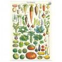 Plakat Le Jardin 50x70cm-00