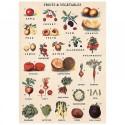 Plakat Fruit/vegetables 50x70cm-02