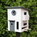 Fuglehus Wildlife Garden Funkis-00