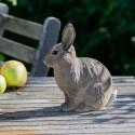 Decobird - Vild kanin