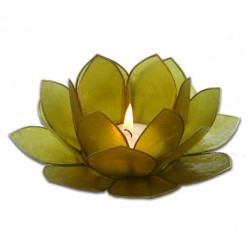 Lotusstage - Lime grøn