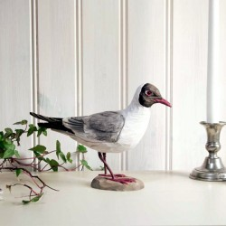Decobird - Måge