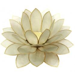 Mega Lotus - Hvid