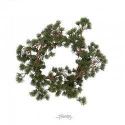 Ib Laursen - Krans af Cedertræ