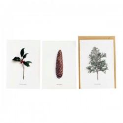 Postkort m/kuvert 6 stk - Winter