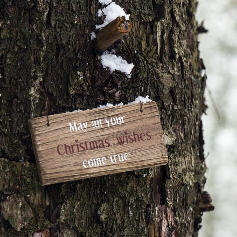 Ib Laursen - Skilt May all your christmas...