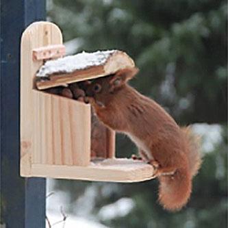 Egern foderbræt